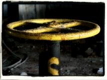 Schwarz-Gelb - so gerne!