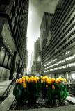Park Avenue Impression 1
