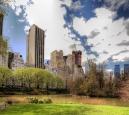 NYC aus dem Central Park heraus betrachtet