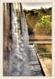 Wassergarten Reden 3. Fototour